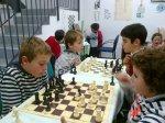 ajedrez 2013 013