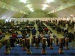 Festival Escolar 2013 019